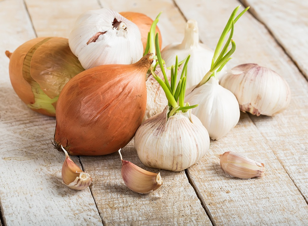 Sprouted garlic - best ways to speed up your metabolism
